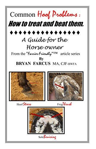 Common Hoof Problems How To Treat Beat Them A Guide For The Horse Owner