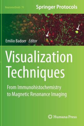 Visualization Techniques From Immunohistochemistry To Magnetic Resonance Imaging